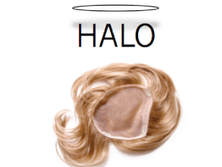 Top Of The Head Hair Piece Halo The Beauty Box Salon