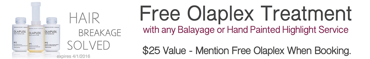 Free Olaplex Treatment-2